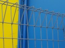 Fences on bue and yellow