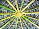 bamboo roof brazil