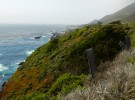 Big Sur #7