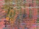 Indian Summer Reflections 1
