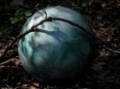 sphere in the wood