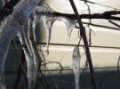 Iced vines